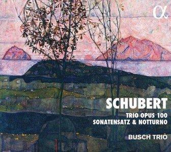 Schubert: tio opus 100,..