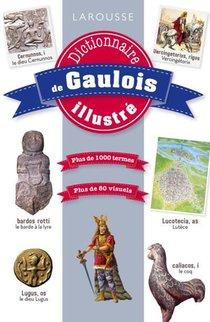 Dictionnaire De Gaulois Illustre