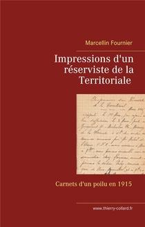 Impressions D'un Reserviste De La Territoriale : Carnets De Guerre En 1915