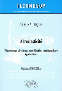 Aeronautique - Aeroelasticite ; Phenomemes Physiques, Modelisation Mathematique - Applications