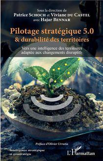 Pilotage Strategique 5.0 Et Durabilite Des Territoires ; Vers Une Intelligence Des Territoires Adaptee Aux Changements Disruptifs2
