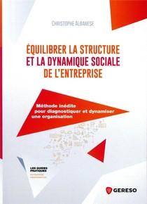 Equilibrer La Structure Et La Dynamique Sociale De L'entreprise