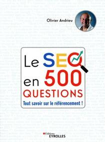 Le Seo En 500 Questions