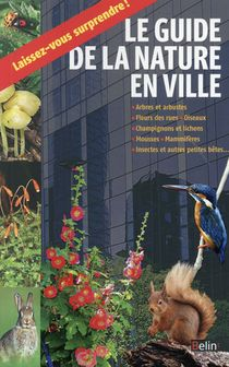 Guide Du Promeneur En Ville
