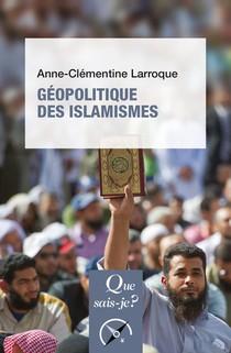 Geopolitique Des Islamismes (3e Edition)