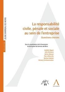 La Responsabilite Civile, Penale Et Sociale Au Sein De L'entreprise ; Questions Choisies