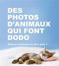 Des Photos D'animaux Qui Font Dodo ; Doit-on Vraiment En Dire Plus ?