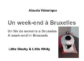 Un Week End A Bruxelles