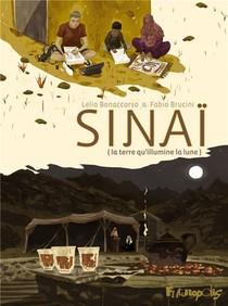 Sinai - La Terre Qu'illumine La Lune