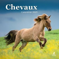 Chevaux Calendrier 2021