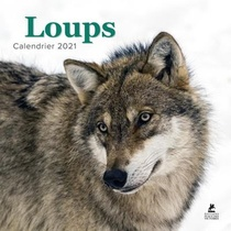 Loups Calendrier 2021
