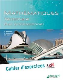 Mathematiques Terminale Bac Professionnel : Cahier D'exercices