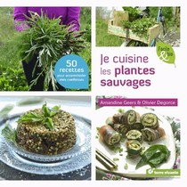 Je Cuisine Les Plantes Sauvages ; 50 Recettes Pour Accomoder Mes Cueillettes