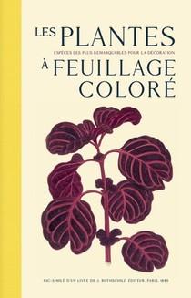 Les Plantes A Feuillage Colore : Les Especes Les Plus Remarquables Pour La Decoration