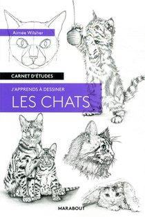 Carnet D'etudes ; J'apprends A Dessiner Les Chats