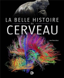 La Belle Histoire Du Cerveau