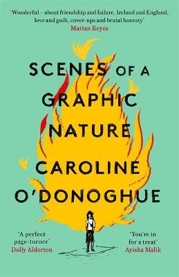 Scenes of a Graphic Nature ; 'A perfect page-turner ... I loved it' - Dolly Alderton