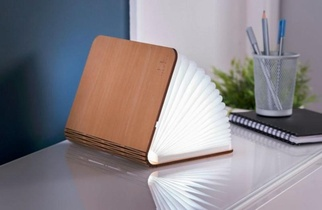 LARGE BOOKLIGHT MAPLE