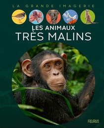 Les Animaux Tres Malins