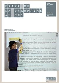 Faire De La Grammaire Au Cm1 - Reedition 2021
