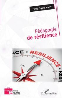 Pedagogie De Resilience