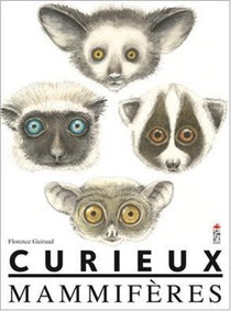 Curieux Mammiferes