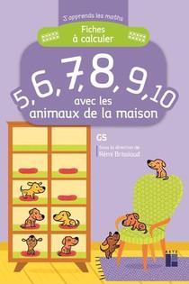 J'apprends Les Maths ; Gs ; Fiches A Calculer 5, 6, 7, 8, 9, 10 ; Avec Les Animaux De La Maison