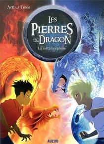 Les Pierres De Dragon Tome 1 - La Metamorphose