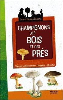 Champignons Des Bois Et Des Pres