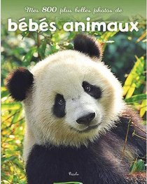 Les Bebes Animaux ; Photos