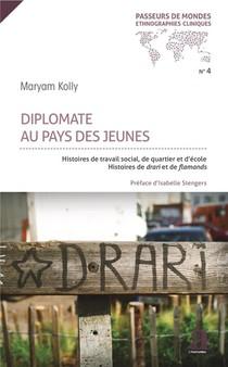 Diplomate Au Pays Des Jeunes ; Histoires De Travail Social, De Quartier Et D'ecole ; Histoires De Droit Et De Flamands