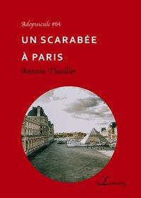 Un Scarabee A Paris