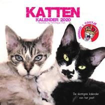 De kattenkalender