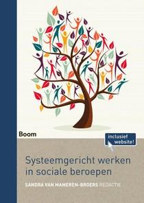 Systeemgericht werken in sociale beroepen