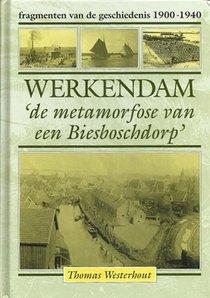 Werkendam de metamorfose van een Biesboschdorp