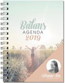 Balansagenda 2019