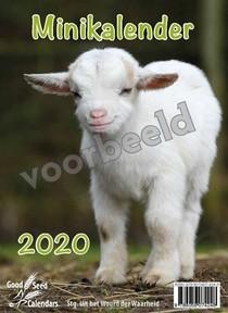 Minikalender 2021 Met Mooie Afbeeldingen