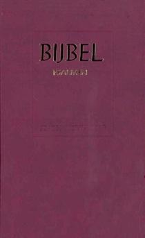 Schoolbijbel 614205 Sv Rood Ps 12g Ritm