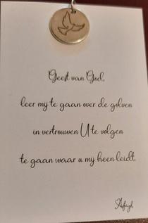 Sierraad - RVS bedeltje met duif - Geest van God ...