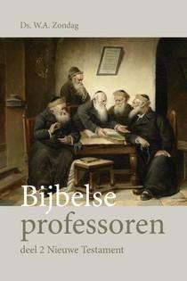 Bijbelse professoren