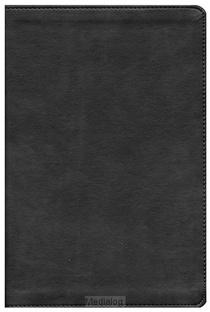 Csb Compact Ultrathin Bible