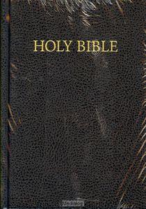 Engelse Bijbel Kjv + Psalmen E2