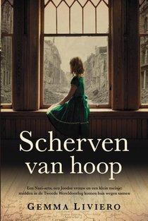 Scherven Van Hoop