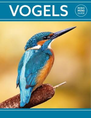 Rebo mini guide - Vogels