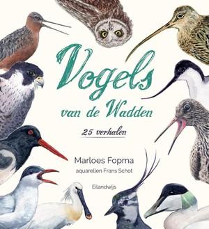 Vogels van de Wadden
