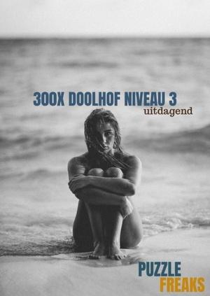 300x doolhof niveau 3