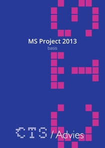 MS Project 2010-2013 Basis