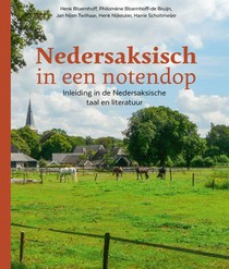 Nedersaksisch in een notendop