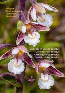 Orchideeën van de Benelux