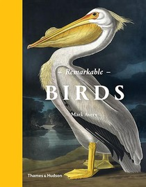 Remarkable birds
